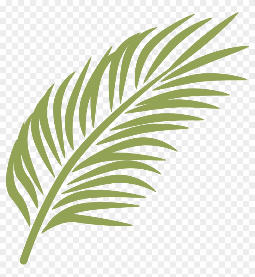 Palm fronds clipart png jpg black and white library Png For - Palm Fronds Clip Art, Transparent Png - 2550x2646 ... jpg black and white library