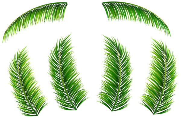 Palm fronds clipart png image library download Pin by Kacha Chuajetton on fsg | Plant leaves, Clip art, Art ... image library download