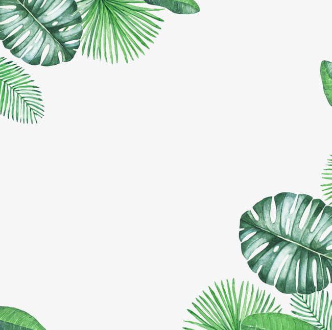 Palm leaf border clipart clip art Green Fresh Leaf Border Texture PNG, Clipart, Backgrounds ... clip art