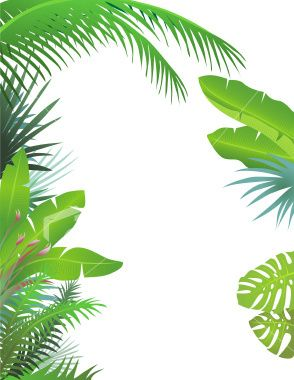 Palm leaf border clipart library Jungle Leaf Border - Quoteko. - ClipArt Best - ClipArt Best ... library