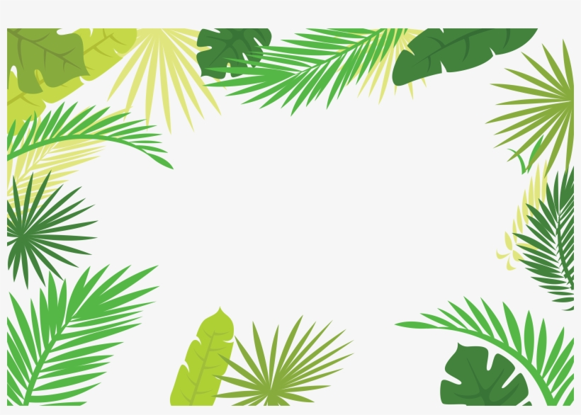 Palm leaf border clipart vector library stock Arecaceae Text Branch Leaf - Palm Leaf Border Png ... vector library stock