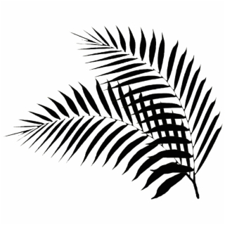 Palm leaves with pineapple clipart black and white clip art transparent download Palm Leaf PNG, Backgrounds and Vectors Free Download ... clip art transparent download