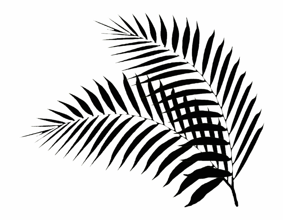 Palm print clipart picture royalty free Black Palm Leaf - Black Palm Leaf Png Free PNG Images ... picture royalty free