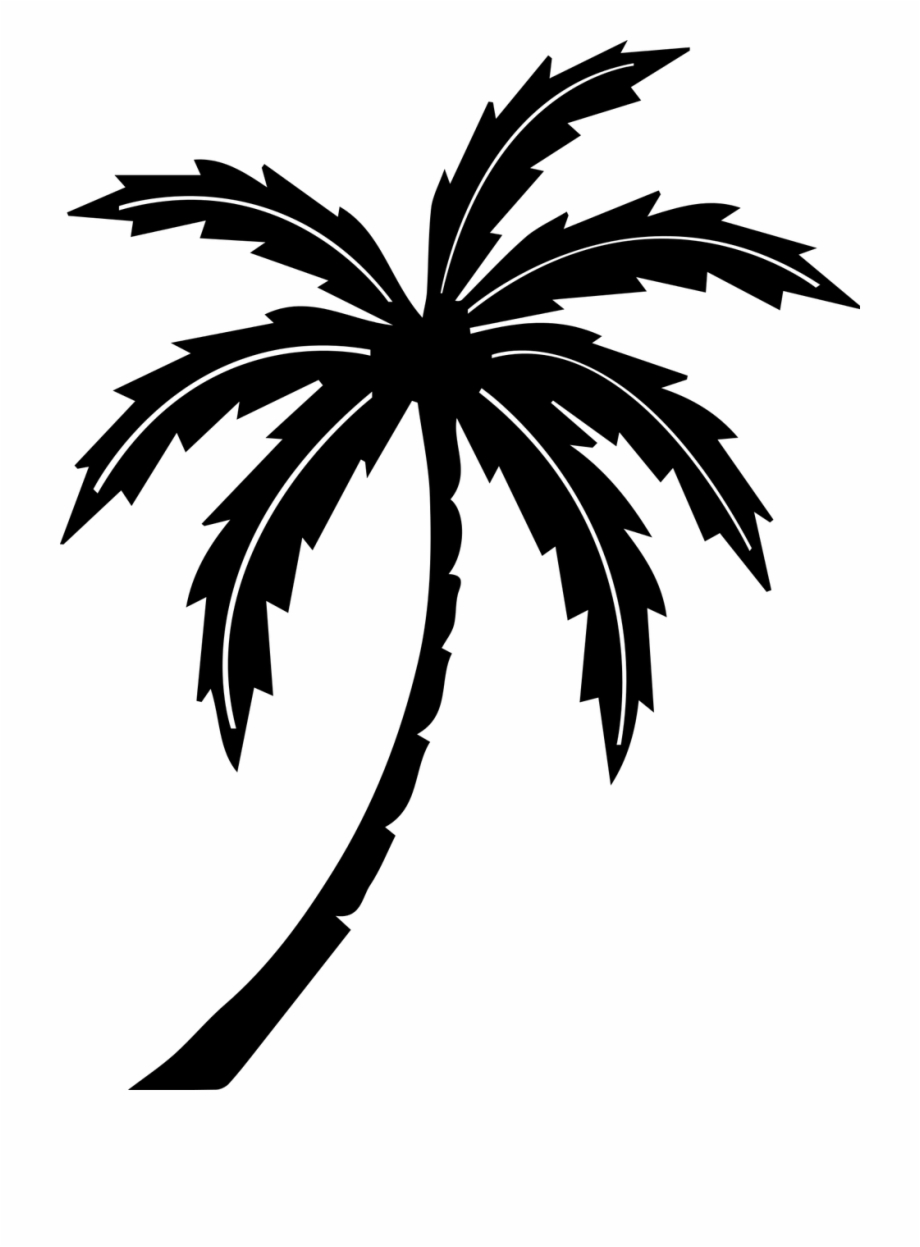 Palm tree clipart free black white png library Palm Tree Tree Tropic - Black And White Palm Tree Clipart No ... png library