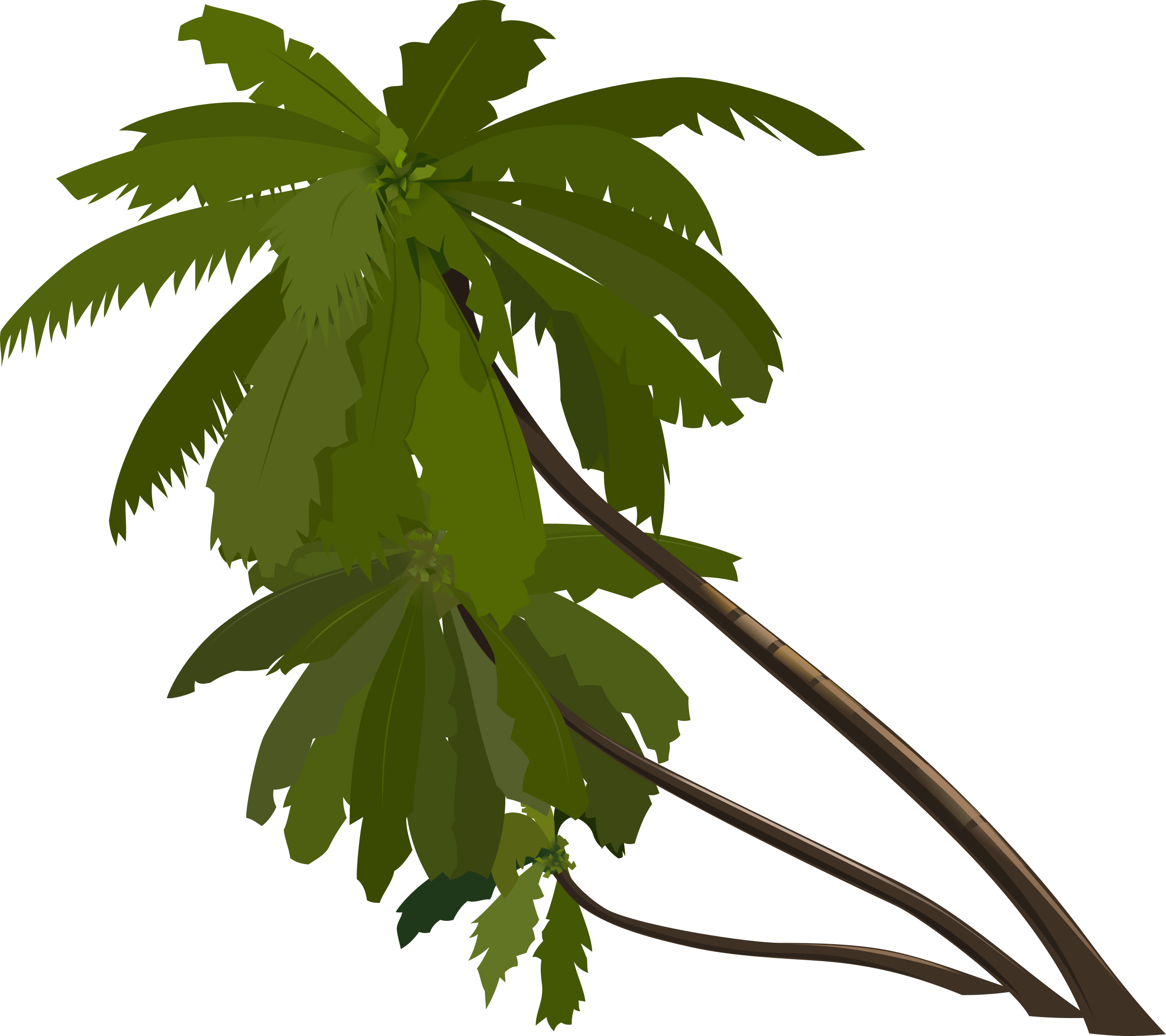 Palm tree and beach clipart clip freeuse Clipart - palm-trees clip freeuse