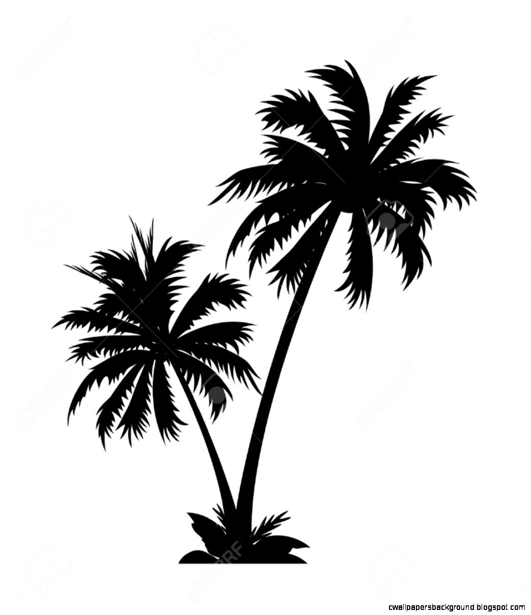 Palm tree clipart black and white free download Palm tree clipart black and white clipartfest – Gclipart.com download