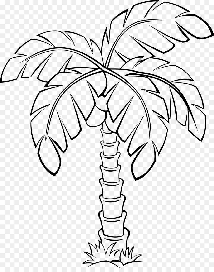 Palm tree clipart outline clipart transparent Black And White Flower clipart - Coconut, Drawing, Tree ... clipart transparent