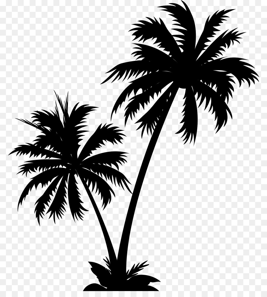 Palm tree clipart vector free picture transparent Vector graphics Palm trees Clip art Illustration Royalty ... picture transparent