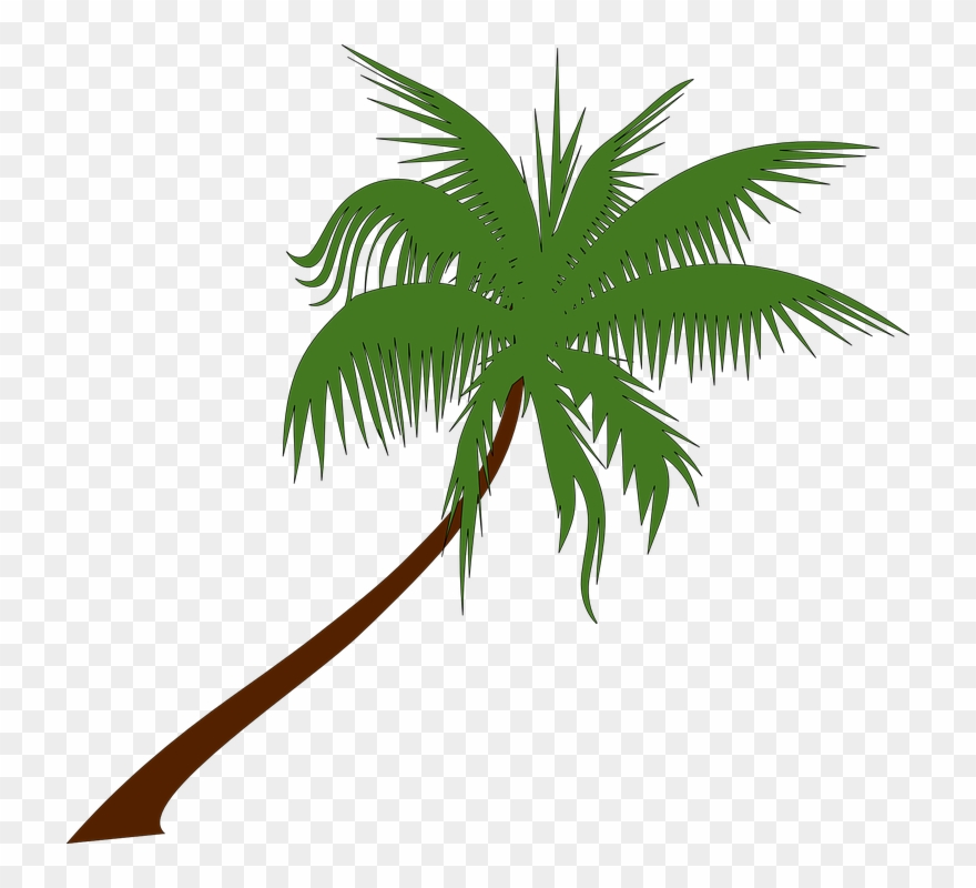 Palm tree clipart vector free graphic black and white stock Free Vector Graphic - Palm Tree Vector Png Clipart (#1022648 ... graphic black and white stock