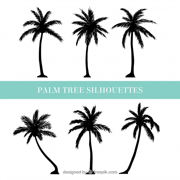 Palm tree silhouette clipart free clip download Silhouettes of palm trees Vector   Free Download clip download