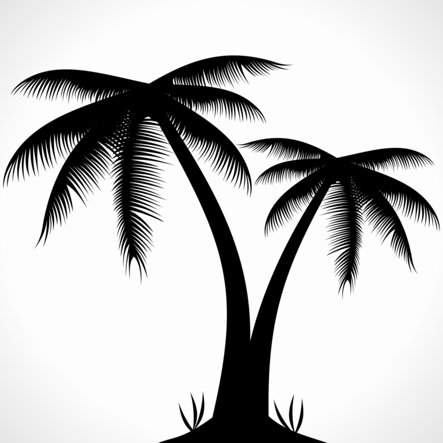 Palm tree silhouette clipart free svg freeuse download Palm Tree Silhouette clipart - Graphics, Illustration, Tree ... svg freeuse download