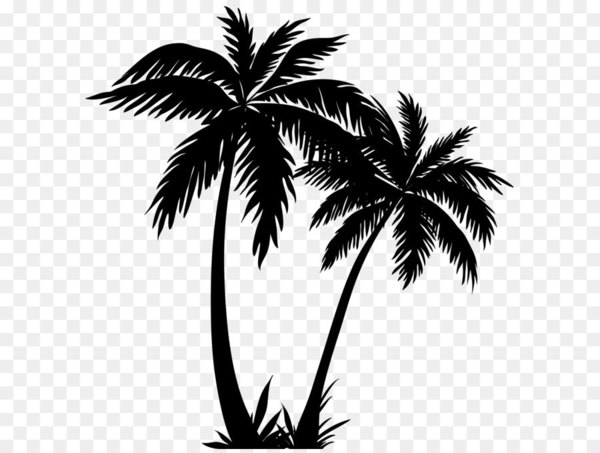 Palm trees sunset clipart picture transparent download Arecaceae Silhouette Sunset - Palm Trees Silhouette PNG Clip ... picture transparent download