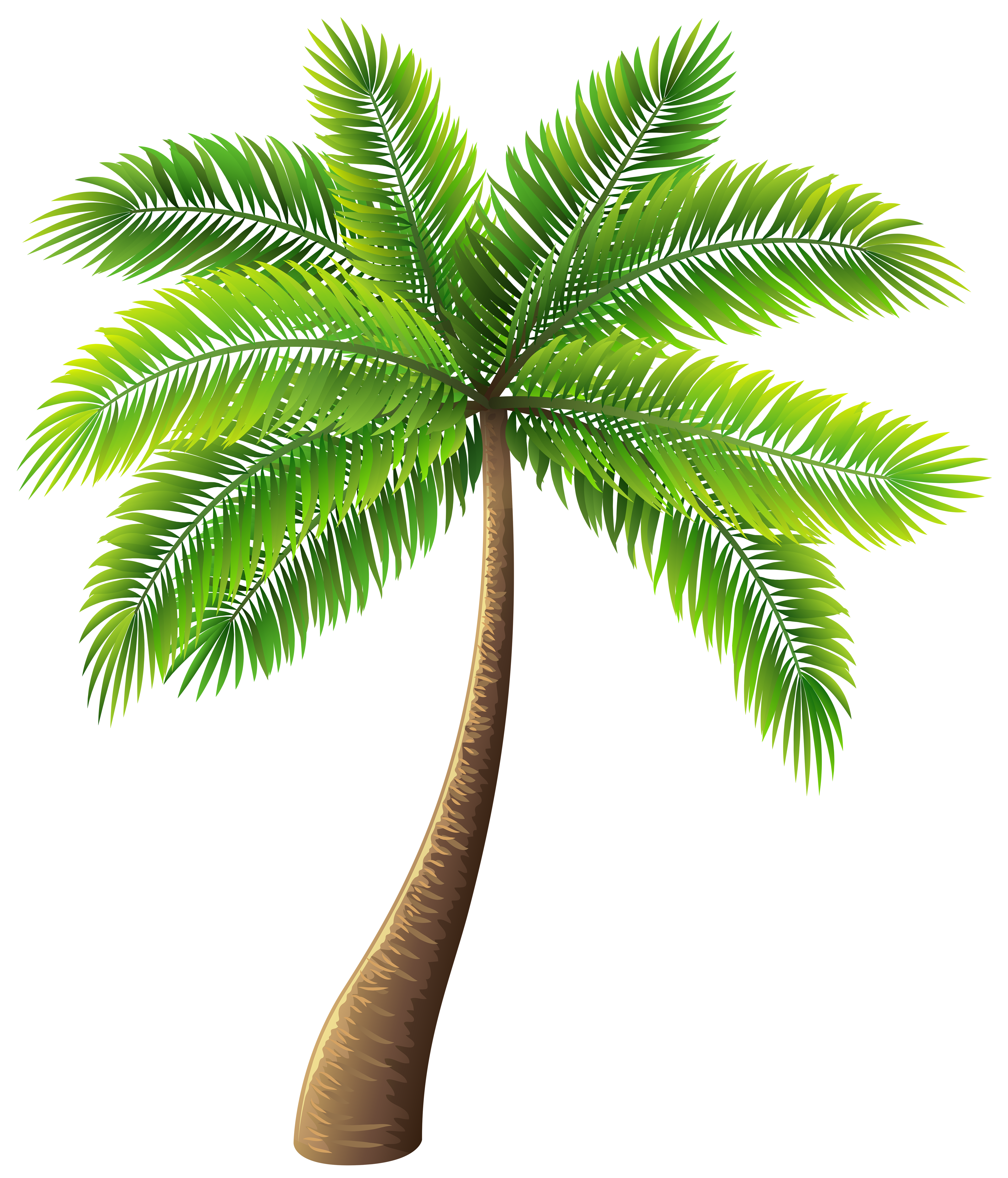 Palmrtree clipart vector freeuse download Palm Tree PNG Clip Art - Best WEB Clipart vector freeuse download