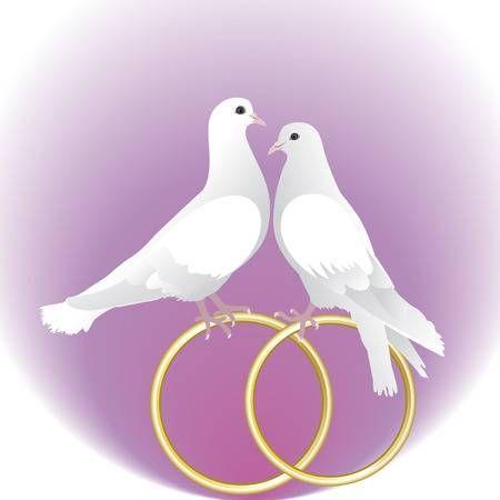 Palomas de boda clipart svg free download Stock Photo | Hamilton | Anillos de boda, Anillos de bodas ... svg free download