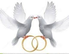 Palomas de boda clipart svg free library imagenes-de-palomas-para-boda-anillos-e1437592354912 | Boda ... svg free library
