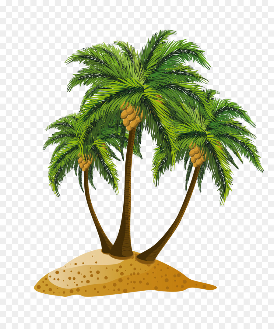 Panama city beach clipart black and white clip royalty free Coconut Tree Cartoon png download - 1667*2000 - Free ... clip royalty free