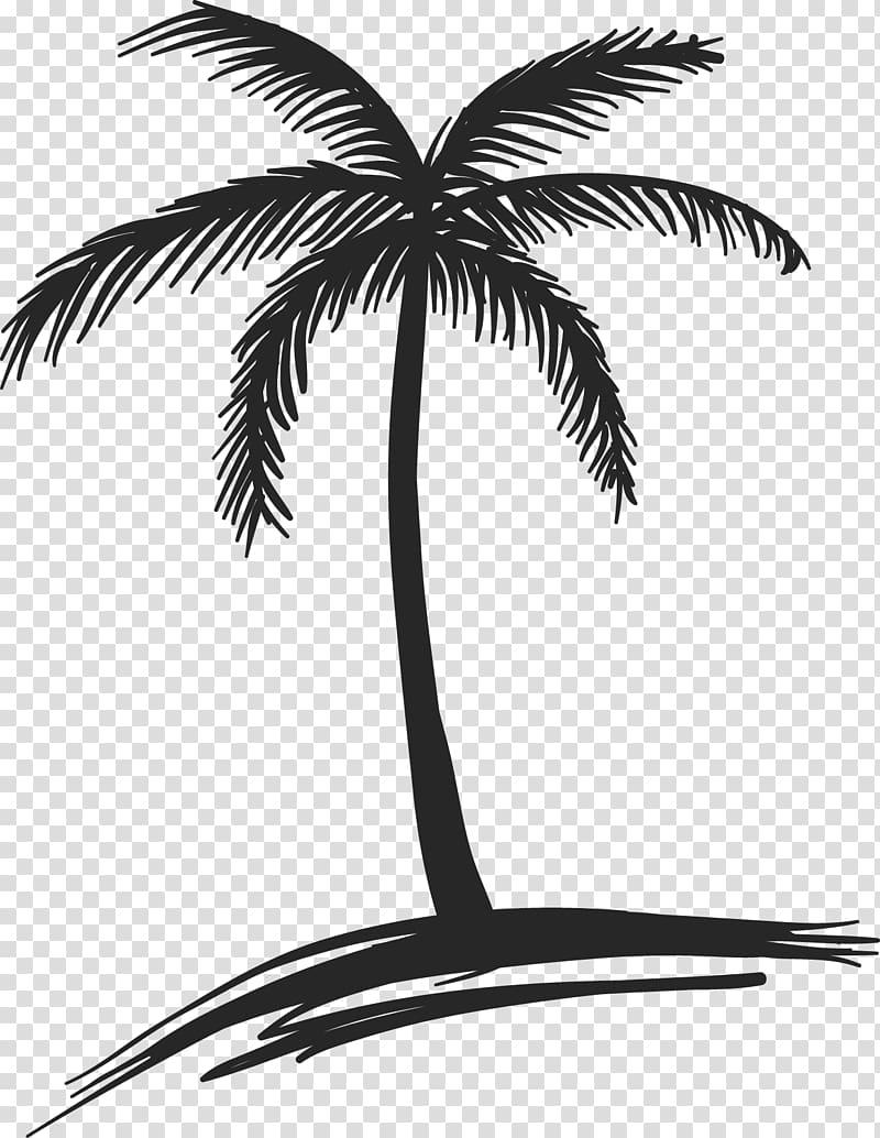Panama city beach clipart black and white clip art transparent stock Panama City Beach , palm tree transparent background PNG ... clip art transparent stock