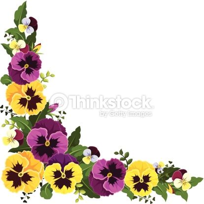 Pansies clipart free clip art stock Vector corner background with yellow and purple pansy ... clip art stock