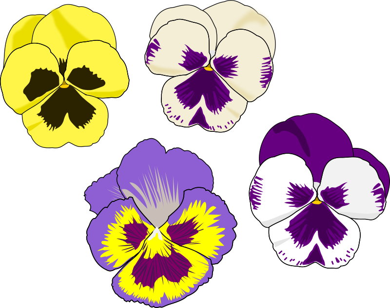 Pansy pictures clipart banner black and white library Free Clipart: Pansy Selection | cookieater banner black and white library