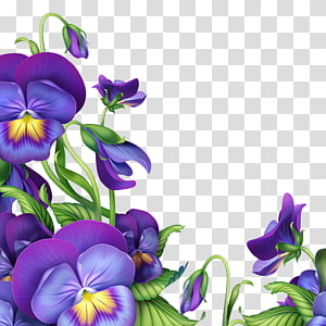 Pansy border clipart graphic free download Flower Blue Violet Morning glory Light, morning glory ... graphic free download