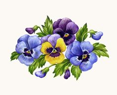 Pansy pictures clipart clip art royalty free download Free Pansies Cliparts, Download Free Clip Art, Free Clip Art ... clip art royalty free download