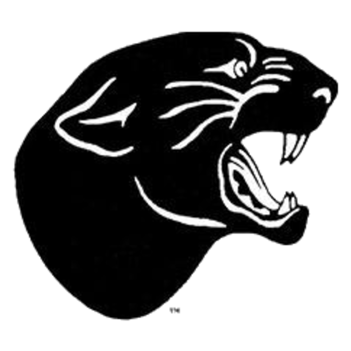 Panther basketball clipart clip stock Wisconsin High School Boys Basketball Scores - ScoreStream clip stock