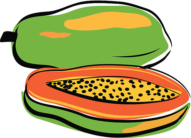 Papaya clipart banner free download Collection of Papaya clipart | Free download best Papaya ... banner free download