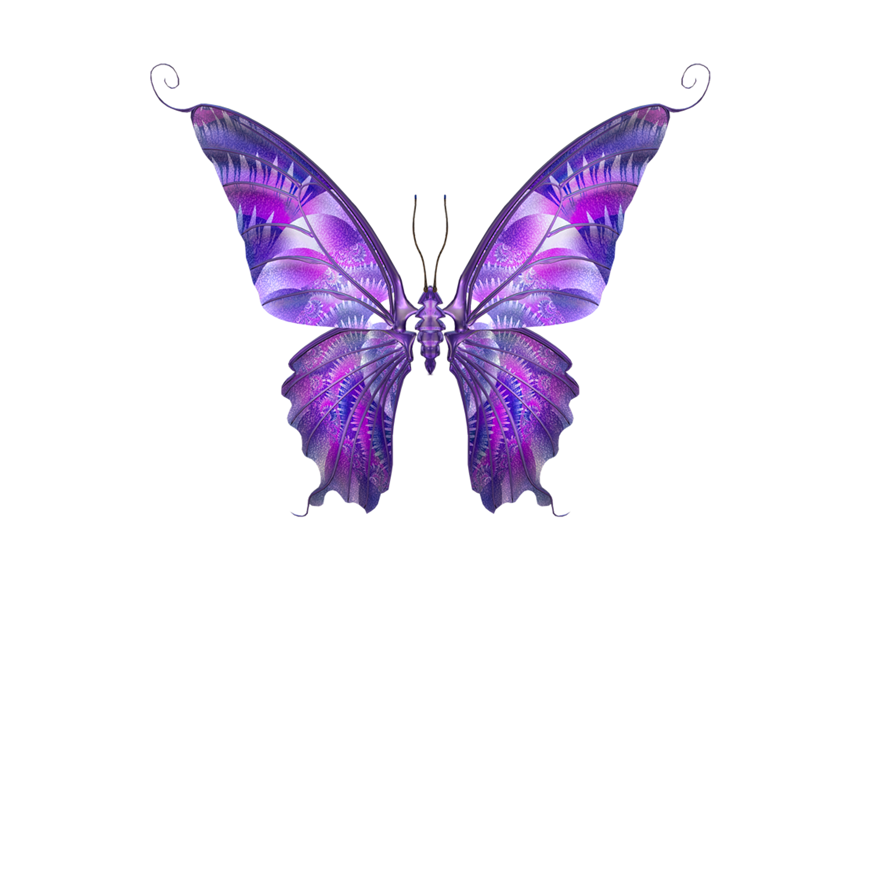 Papillon dog clipart graphic free stock Butterfly Papillon dog Hemiargus ceraunus Clip art - Purple ... graphic free stock