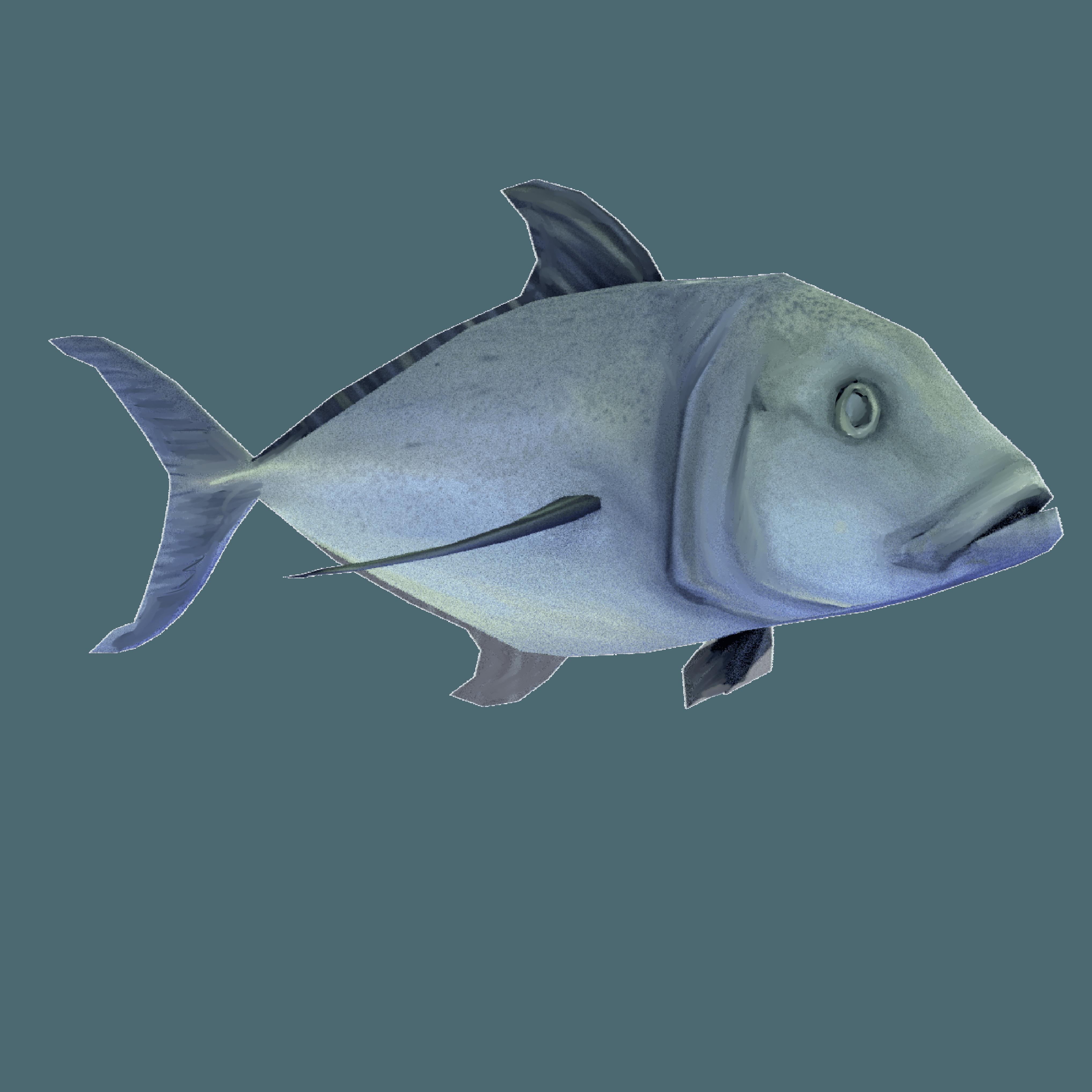 Ulua fish clipart