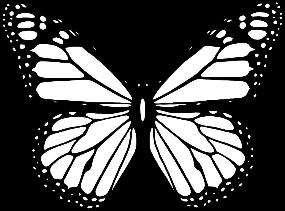 Pappillon clipart black and white cartoon outline jpg transparent Image gratuite sur Pixabay - Des Animaux, Black, Papillon, Vol ... jpg transparent