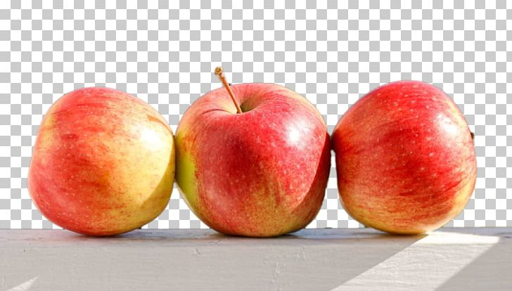 Paradise foods clipart graphic royalty free download Painting Food Paradise Apple PNG, Clipart, Advertising ... graphic royalty free download