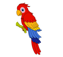 Parrot clipart free Red Blue Yellow Macaw Parrot Clipart – Jewel 106.7 Hudson/Vaudreuil ... free