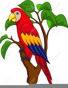 Parrot clipart free download Free Pirate Parrot Clipart | Free Images at Clker.com - vector clip ... free download