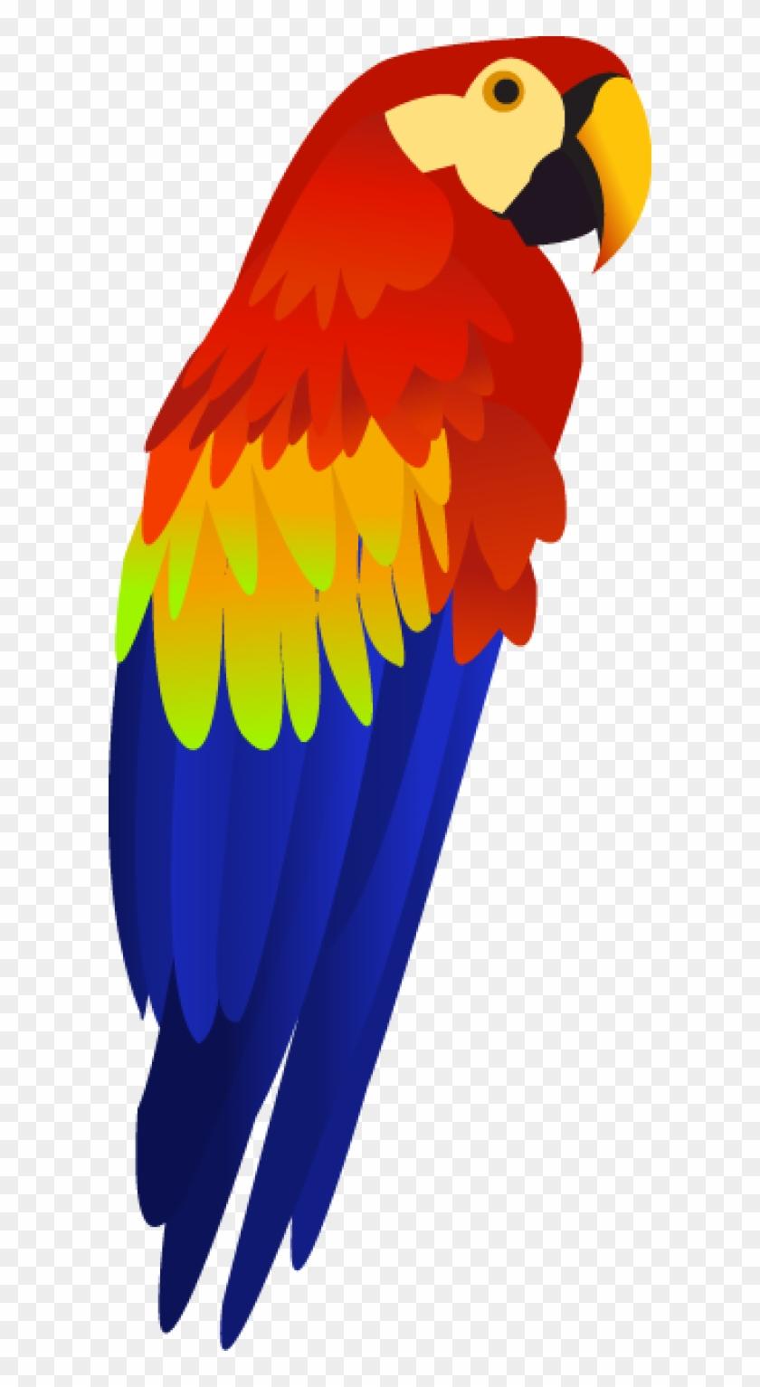 Paret clipart banner stock Parrot Png Free Download - Transparent Background Parrot Clipart ... banner stock