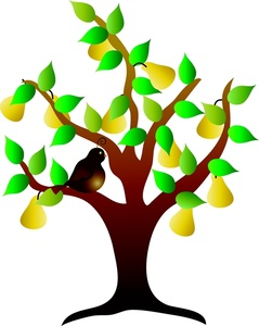 Partridge in a pear tree free clipart clip art library download Free Free Partridge In A Pear Tree Clip Art Image 0515-1003 ... clip art library download