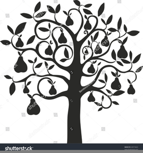 Partridge in a pear tree free clipart graphic free Free Partridge In A Pear Tree Clipart   Free Images at Clker ... graphic free