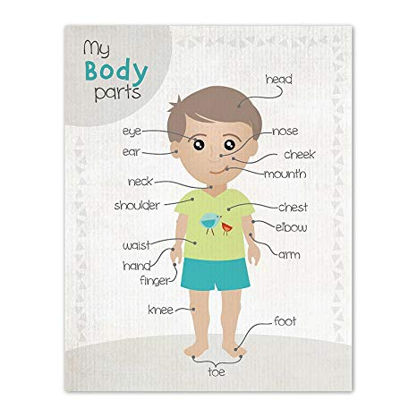Parts of the body clipart picture stock Buy Children Inspire Design Kid\'s Room Decor Body Parts ... picture stock