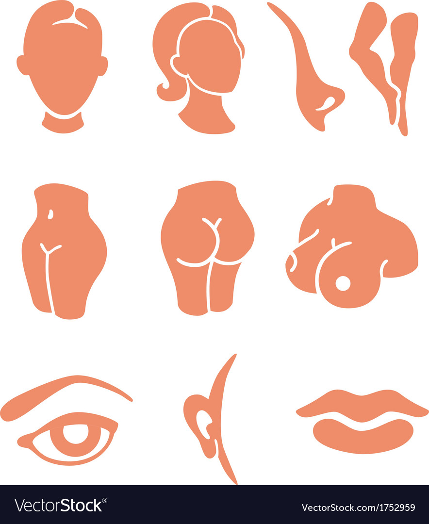 Parts of the face fill in free clipart banner library Body parts and face zones icon set banner library