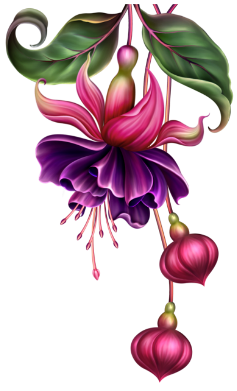 Passion flower clipart png free library fleurs,flores,flowers,bloemen,png | Kwiaty png / Flowers png ... png free library