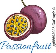 Passionfruit clipart vector library Passionfruit Clip Art - Royalty Free - GoGraph vector library