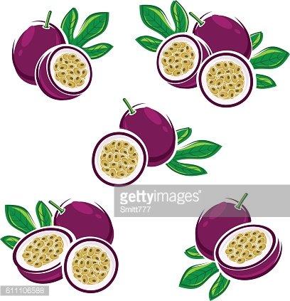 Passionfruit clipart graphic transparent library Passion Fruit Vector premium clipart - ClipartLogo.com graphic transparent library