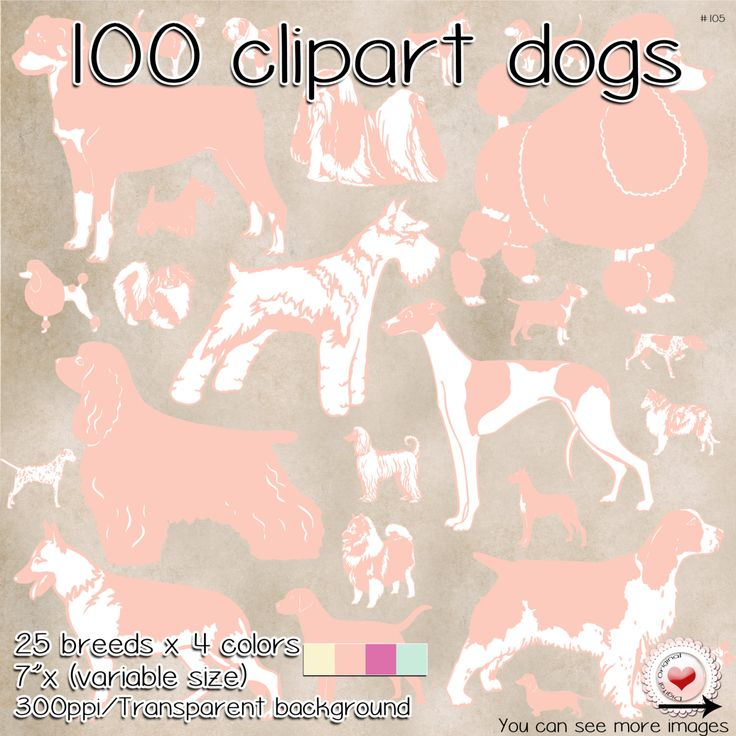 Pastel clipart transparent background jpg black and white stock 100 Clipart - 25 dog breeds - Pastel colors -Transparent ... jpg black and white stock