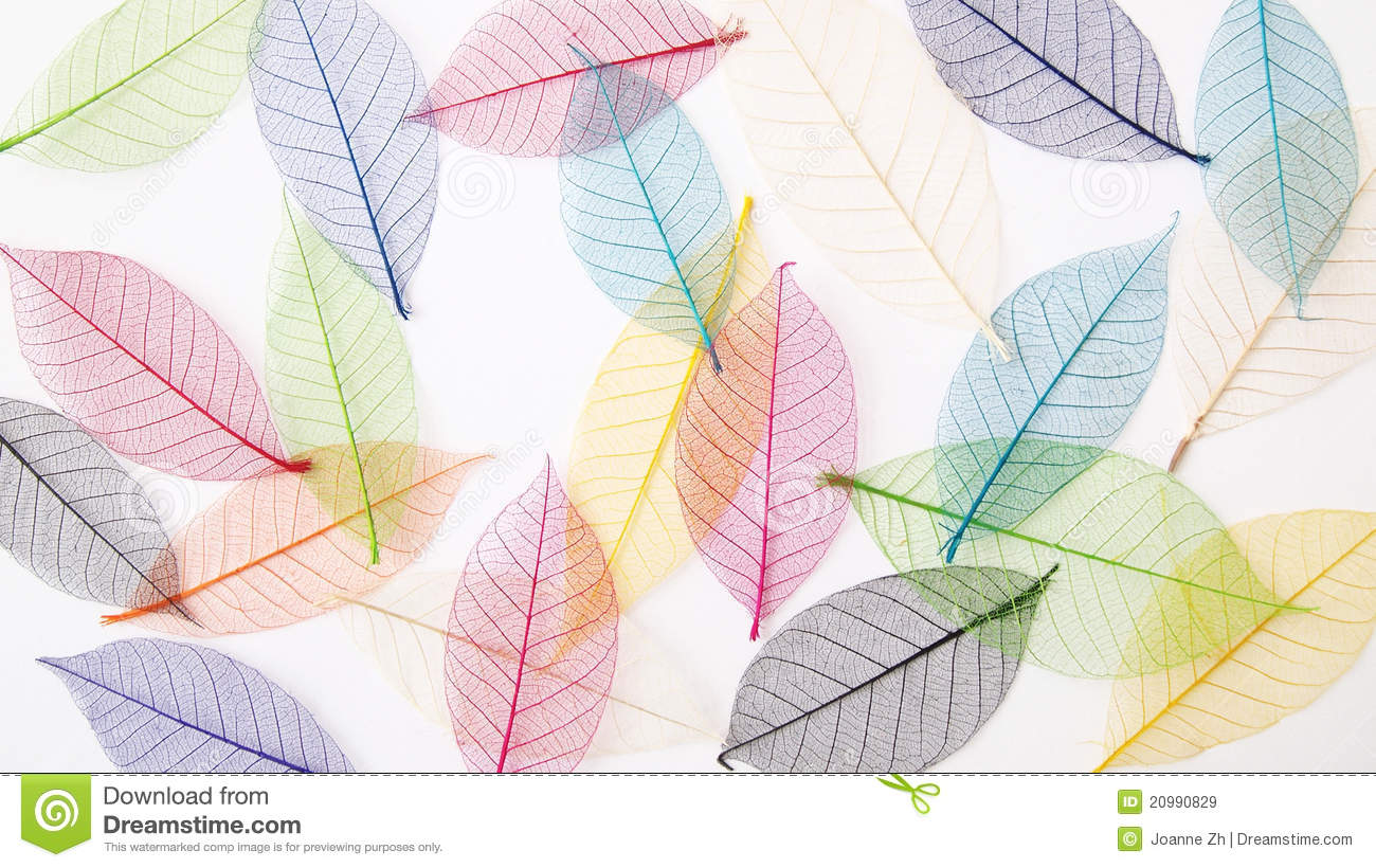 Pastel leaves background clipart clipart free download Pastel leaves background clipart - ClipartFest clipart free download
