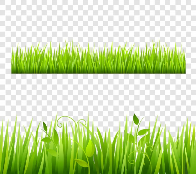 Pasto clipart para photoshop banner freeuse library Grass Vectors, Photos and PSD files | Free Download banner freeuse library