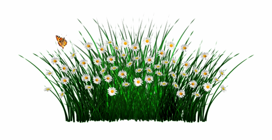 Pasto clipart para photoshop png black and white download Spring Flowers Grass Meadow Plant Garden Nature - Pasto Con ... png black and white download