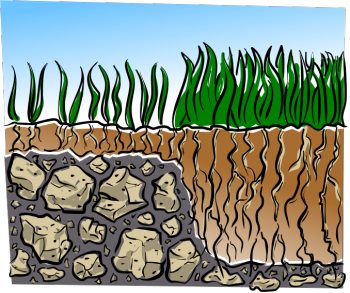 Patch of dirt in tall grass clipart graphic black and white download Organic Lawn Care For the Cheap and Lazy graphic black and white download