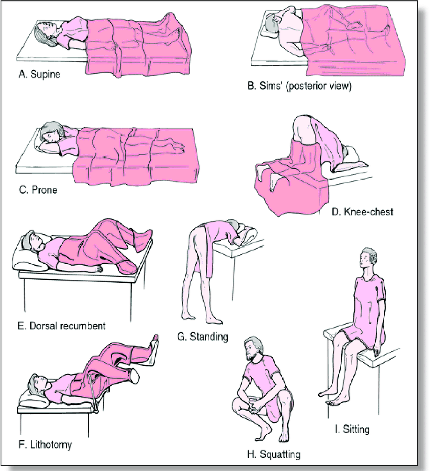 Patient in supine sitting and standing position clipart clip art Types of patient positions .   Download Scientific Diagram clip art