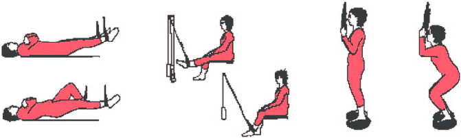 Patient in supine sitting and standing position clipart svg library The exercise protocol with a sling suspension system. (a ... svg library