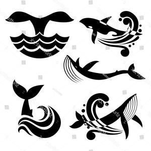 Pattern of whales black and whilte clipart graphic stock White Black Wild Whale Sea Waves | SOIDERGI graphic stock