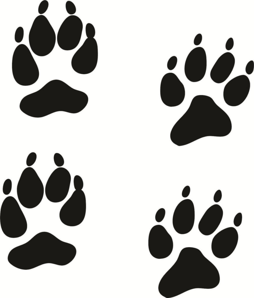 Paw print clipart jpeg vector royalty free library Coyote Paw Print Clipart - Clipart Kid vector royalty free library